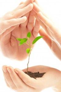Desarrollo-sostenible-vidaplena-maumendoza